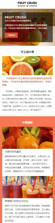 FRUIT水果展示模板